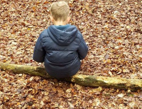 Découverte sensorielle du milieu forestier